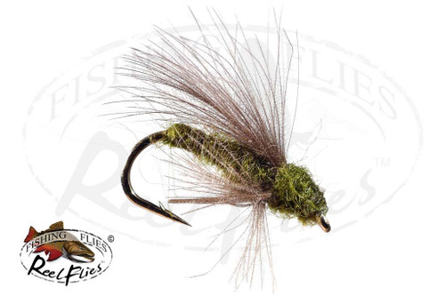 CDC Adult Caddis Olive