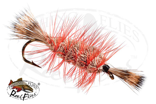 Natural Bomber Orange Hackle White Head & Tail