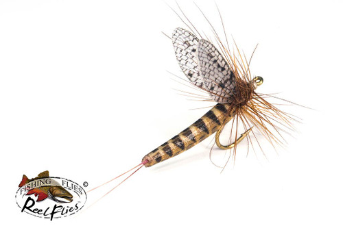 Realistic March Brown Dry Fly