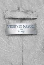 Vesuvio Napoli Silver Grey PAISLEY NeckTie & Handkerchief Matching Neck Tie Set