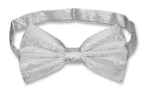 Vesuvio Napoli BowTie Silver Grey Paisley Color Mens Bow Tie