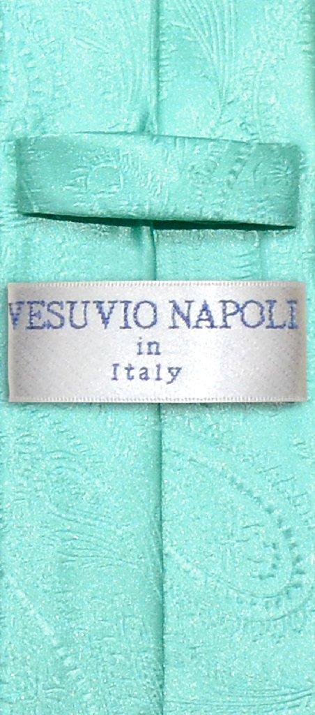 Vesuvio Napoli Narrow NeckTie Solid Aqua Green Paisley Skinny Neck Tie