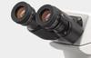 Accu-Scope 3000-LED Eyepieces