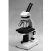National Optical Model 131-RLED Intermediate Compound Microscope