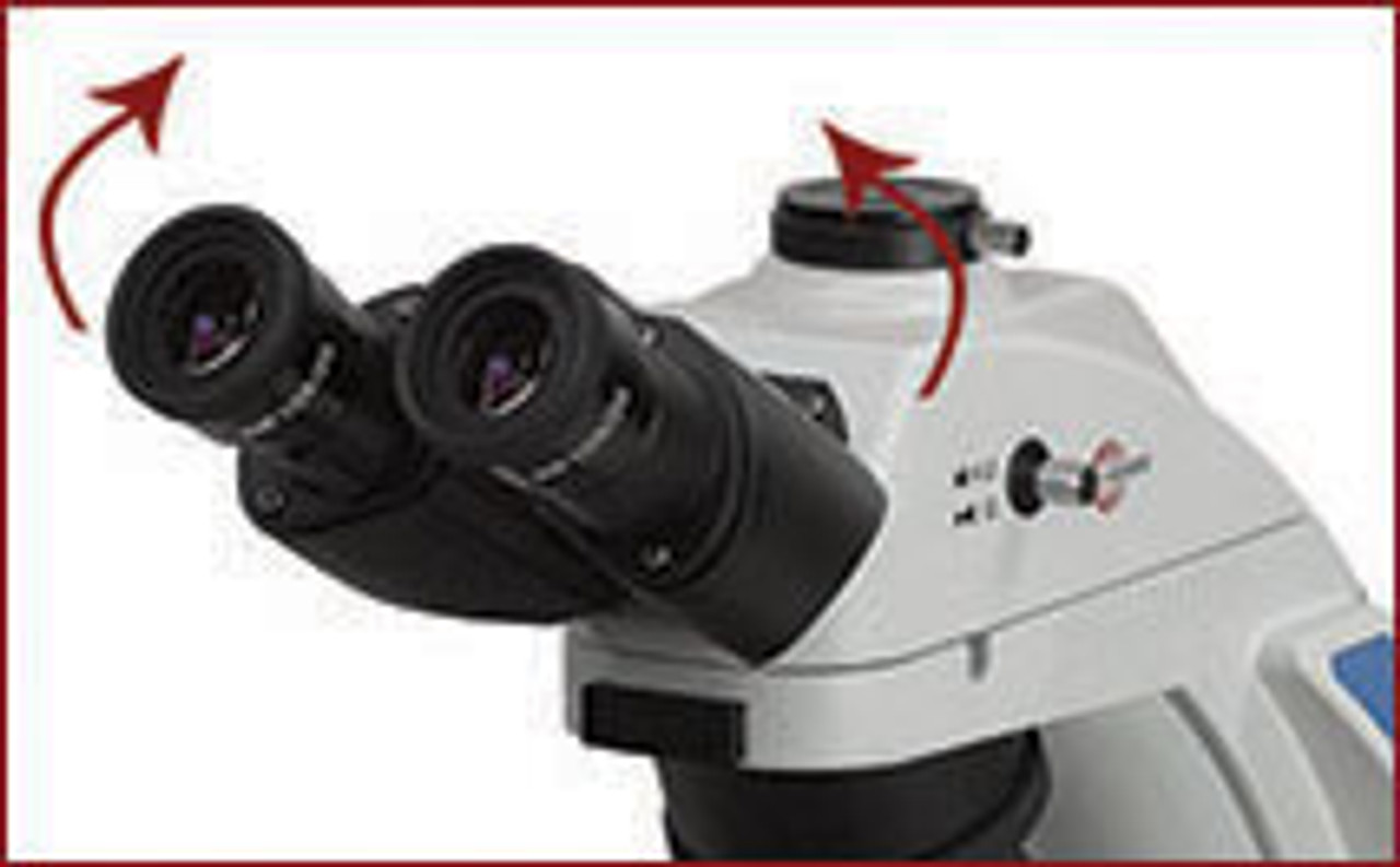 Siedentopf trinocular viewing head, inclined at 30°, with an industry leading 50mm-75mm interpupillary distance adjustment and a 180° eyepoint adjustment to accommodate users of different body types.