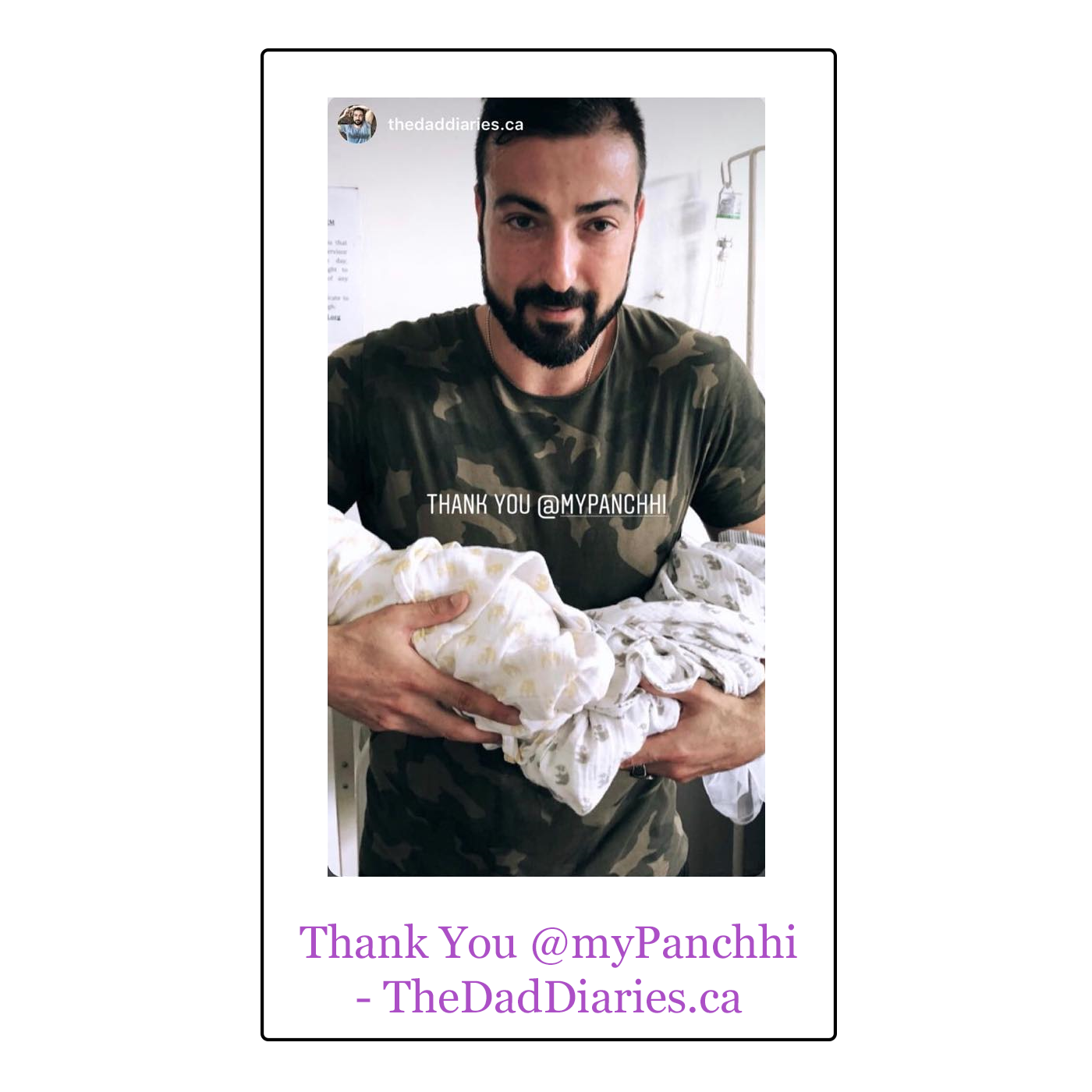 thedaddiaries.png