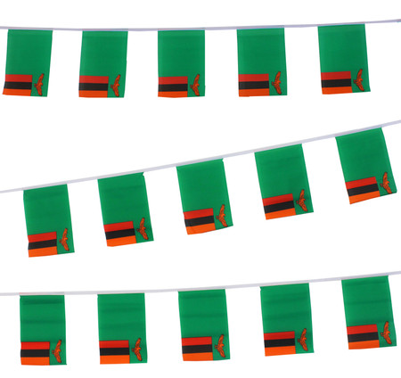 Zambia Bunting