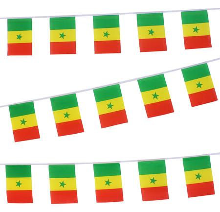 Senegal Bunting