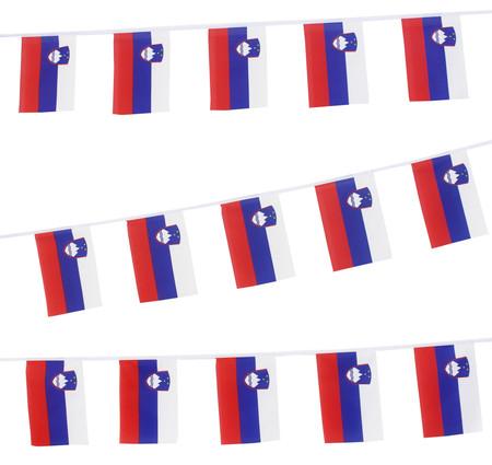Slovenia Bunting