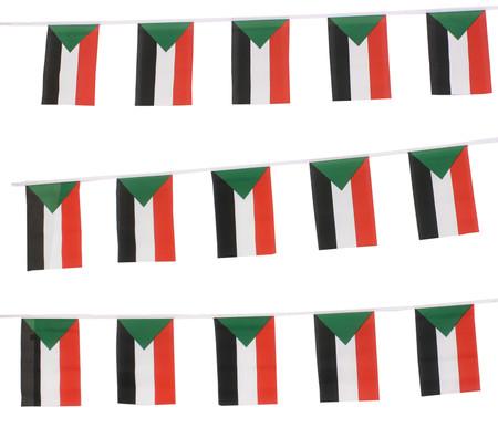 Sudan Bunting