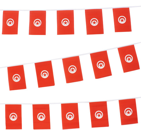 Tunisia Bunting