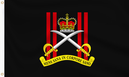 Army Physical Training Corps Flag
