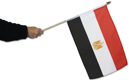 Egypt Waving Flag