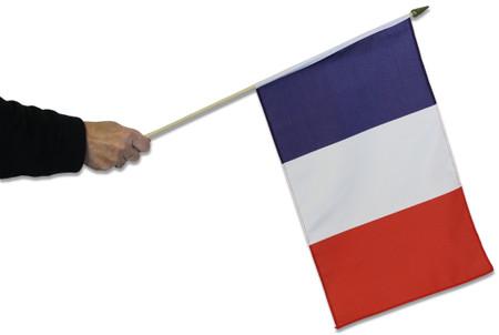 France Waving Flag