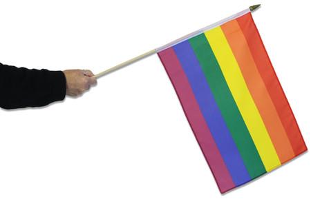 Gay Pride Rainbow Waving Flag