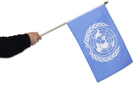 United Nations Waving Flag
