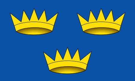 Munster Flag