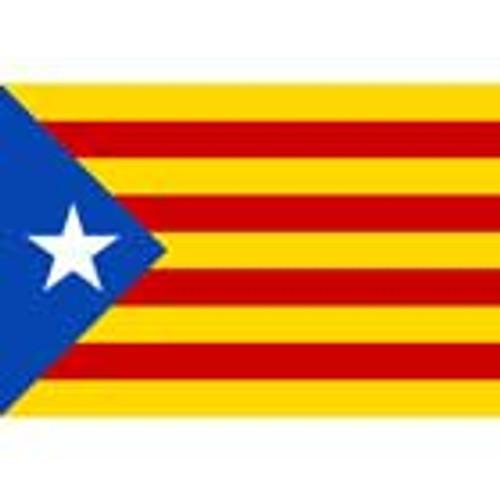 Estelada Blava Flag