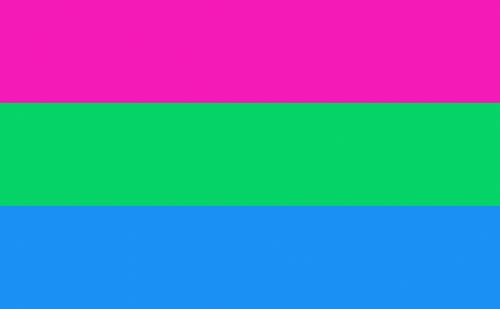 Polysexual Flag