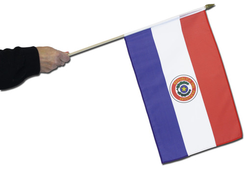 Paraguay (1990-2013) Waving Flag