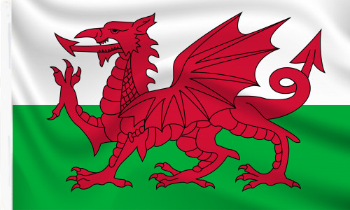 Wales Sleeved flag to buy online