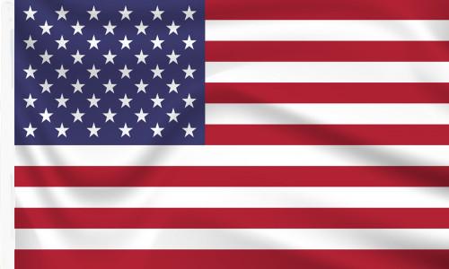 Sleeved USA Flag for sale online