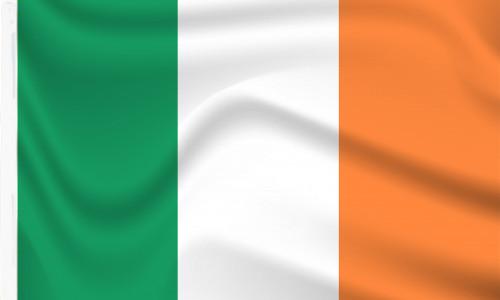 Ireland sleeve flag to buy online