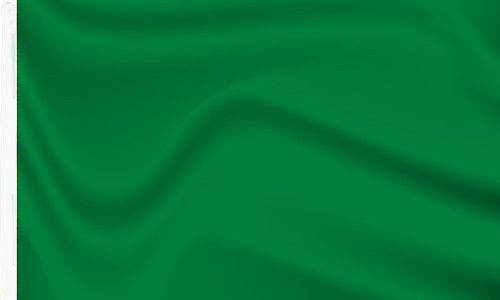 Green Flag with sleeve to buy online