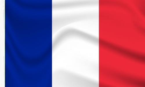 France Flag with Sleeve to buy online