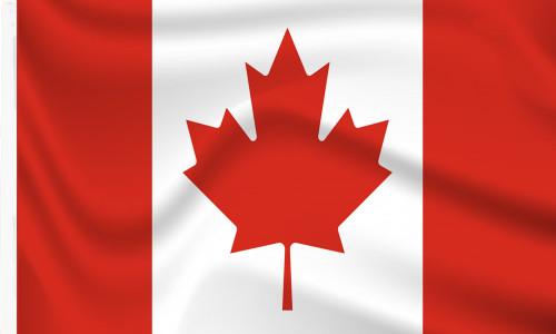 Buy Canada Sleeved Flag online