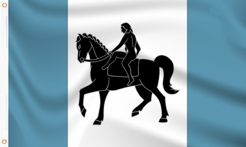 Coventry Flag to buy online