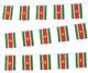 Suriname Bunting