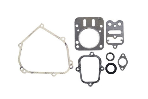 Briggs Animal Complete Gasket Set
