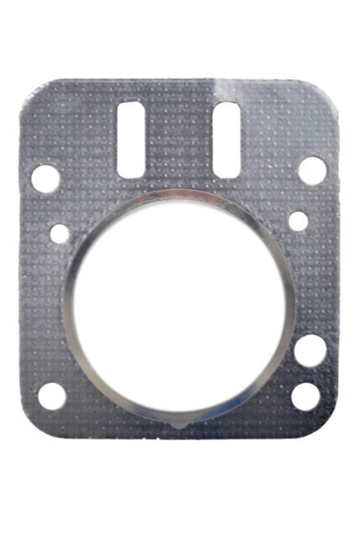 Briggs Animal Head Gasket With Fire Ring