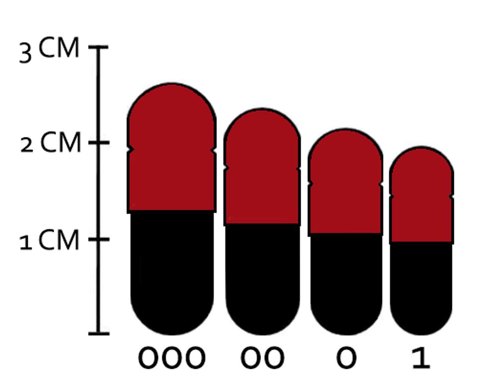 Krabot Capsule Sample Pack 1000mg L