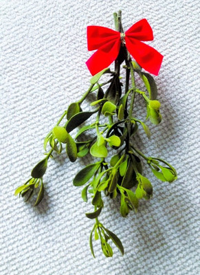 Mistletoe is a plant that has a vibrant green color with red berries.