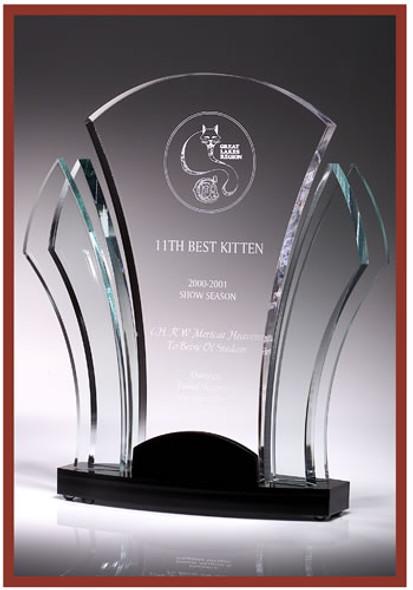 Acrylic Award LF1