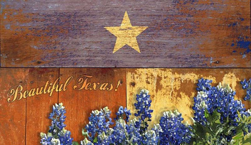 Texas Bluebonnets, Red Horse Signs Western Vintage Art on Wood