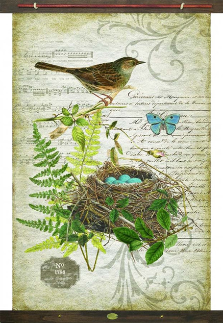 Bird 1786, nest with four blue eggs, Red Horse Signs Canvas Wall Art