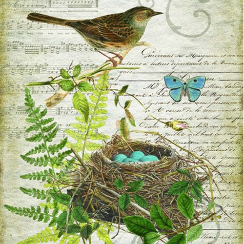 Bird 1786, nest with four blue eggs, Red Horse Signs Canvas Wall Art detail