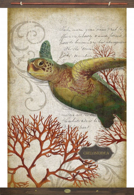 Coral Turtle Red Horse Signs Canvas Art