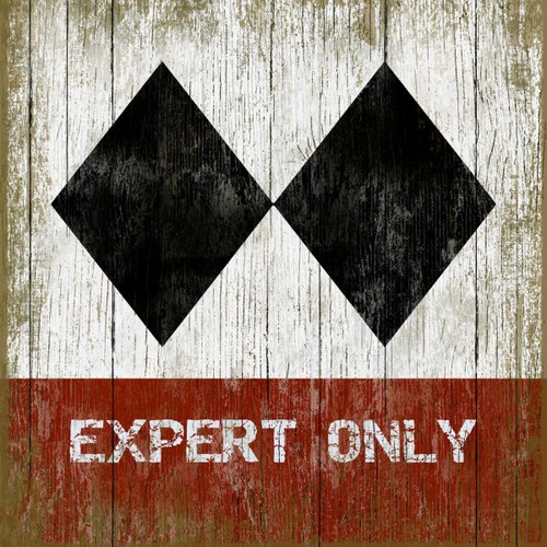 expert only vintage art on wood Red Horse Signs