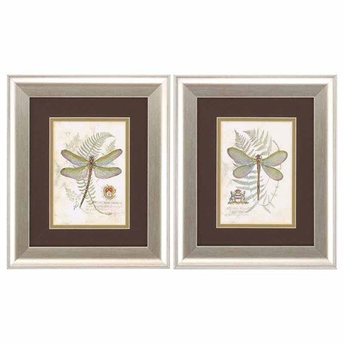 Dragonfly prints, framed and matted, Propac Images, set of 2