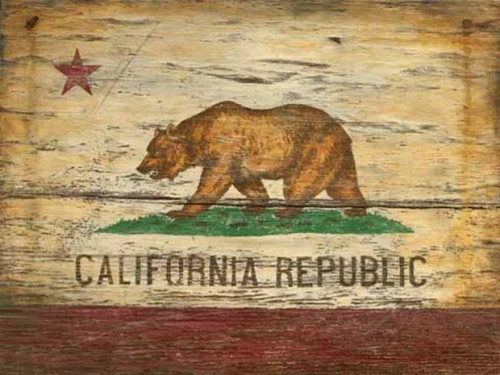 California State Flag, by Red Horse signs, Flag contains a single red star, a red stripe along the bottom, and a California Grizzly Bear