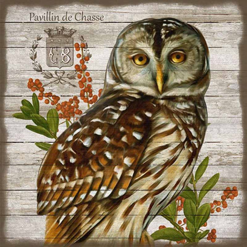French Lodge Owl, Suzanne Nicoll's custom vintage image with an owl is printed on a distressed knotty wood panel, Red Horse signs