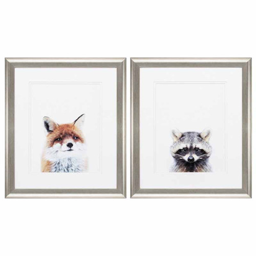 A Fox, a Raccoon, Propac Images, framed animal art, white mat, under glass