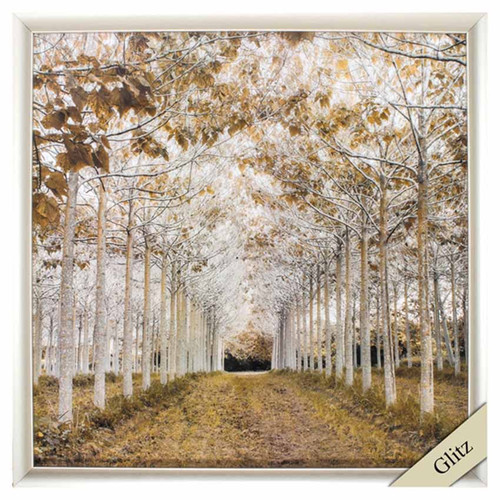Propac Images, White Gold framed art, measures 29 inches square, glitz. A beautiful view of a tree rows in colors of gold, black, brown, and white
