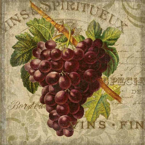 Red Horse Signs, Vintage Wine Art 2, artist Suzanne Nicoll, bunch of red grapes on a taupe background, French theme.