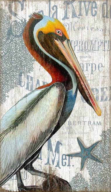 Red Horse Signs, Pelican, vintage art, measures 26 by 15 inches, colorful standing pelican printed on distressed wood panels made from tongue and groove slats of alder, hemlock, or fir lumber, artist Suzanne Nicoll