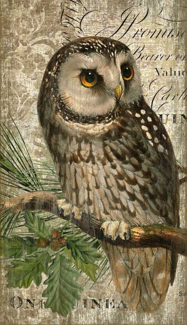 Owl, Red Horse Signs, vintage poster on wood, made from tongue and groove slats of hemlock, fir, or alder,  Artist Suzanne Nicoll